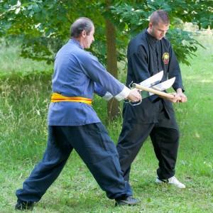 exercices de Wing Chun Kung Fu avec les doubles-couteaux