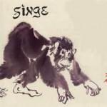 Année du singe