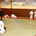 Wing Chun/Jujitsu Brésilien