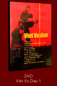 DVD Viet Vo Dao Lee Siu Lung